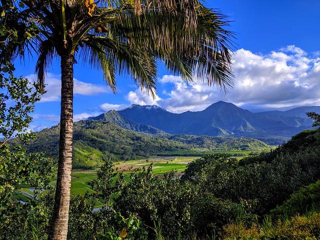 hawai ile de Kauai